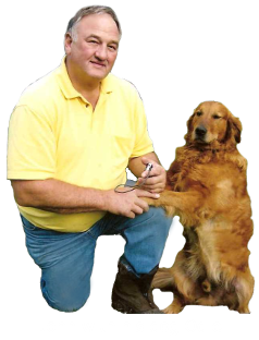 John and Odie